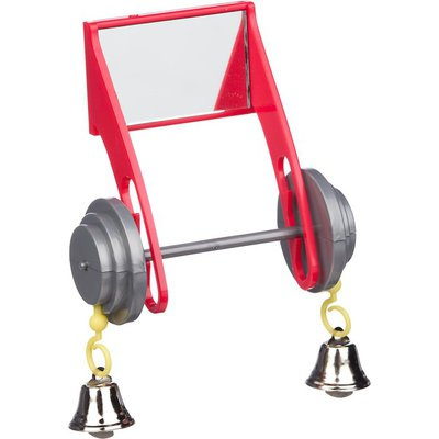 """Insight Activi Toys Mirrored Barbell Bird Toy 3.5"""" L X 2"""" W X 3.5"""" H"""