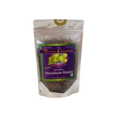 Divine Organics Ray Sun Dried Himalayan Raisins