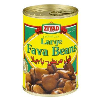 Ziyad Fava Beans Large