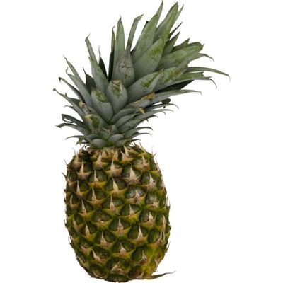 USDA Produce Pineapple
