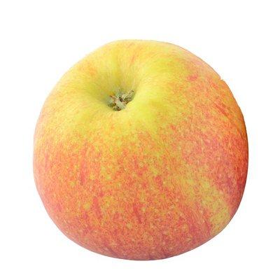 Organic Winesap Apple