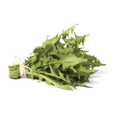 Dandelion Greens Bunch
