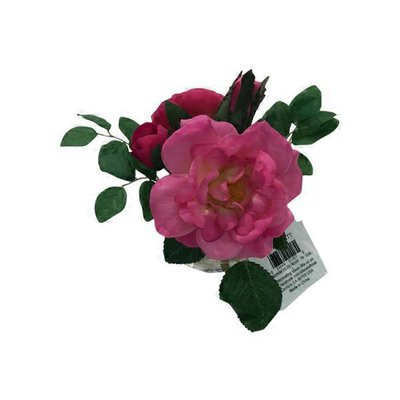 "4"" Ranunculus & Rose in Glass Vase"