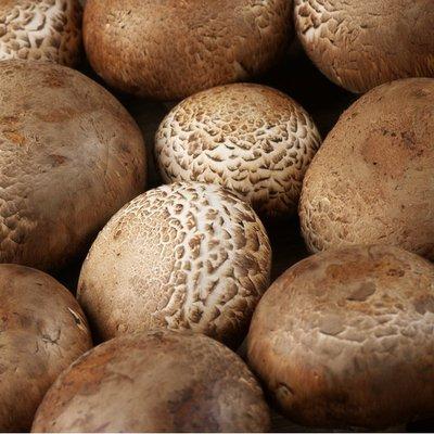 Organic Crimini (Brown) Mushroom