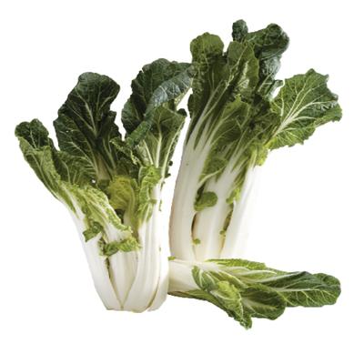 Organic Bok Choy