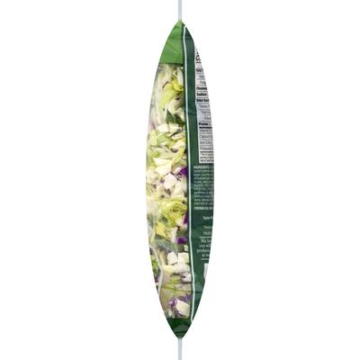 Taylor Farms Dill Pickle Chopped Salad Kit