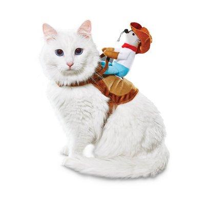 Halloween Kitty Up Cat Cowboy Costume