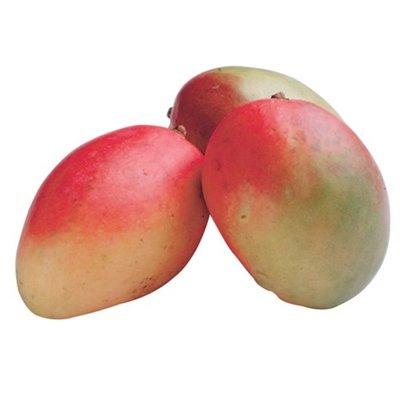 Wegmans Large Mangos