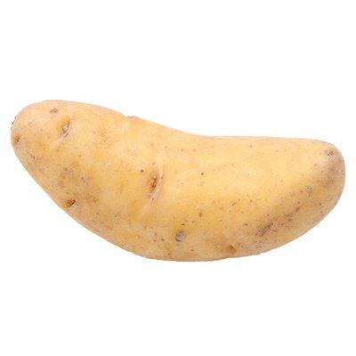 White Fingerling Potatoes
