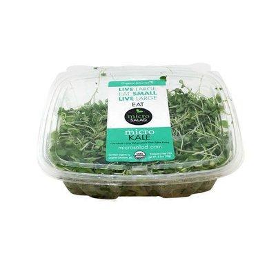 Organic America Micro Salad Organic Micro Radish Mix
