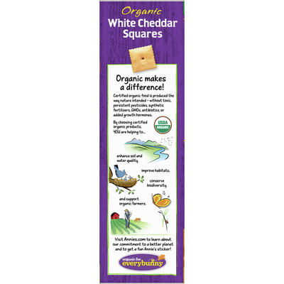 Annie's Organic White Cheddar Squares Baked Snack Crackers