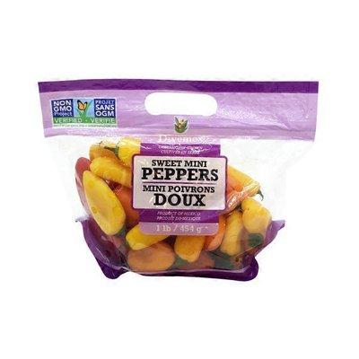 Divemey Sweet Mini Peppers