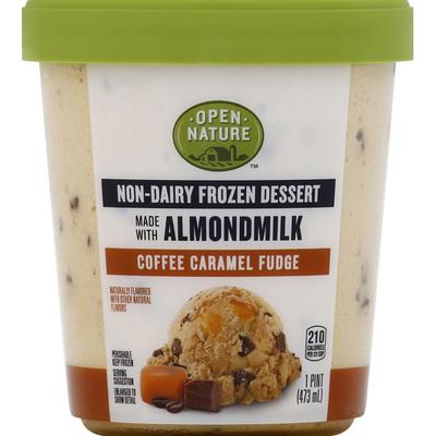 Open Nature Frozen Dessert, Non-Dairy, Coffee Caramel Fudge