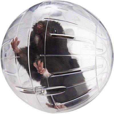 Lee's Kritter Krawler Jumbo Exercise Ball for Small Pet Rodents