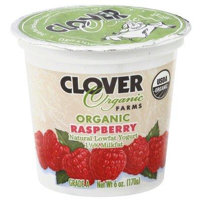 Clover Stornetta Yogurt, Organic, Lowfat, Raspberry, 1-1/2% Milkfat