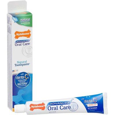 Nylabone Advanced Oral Care Natural Peanut Flavor Dog Toothpaste
