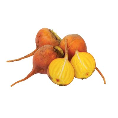 Organic Gold Beet