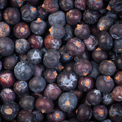 Organic Dried Juniper Berries