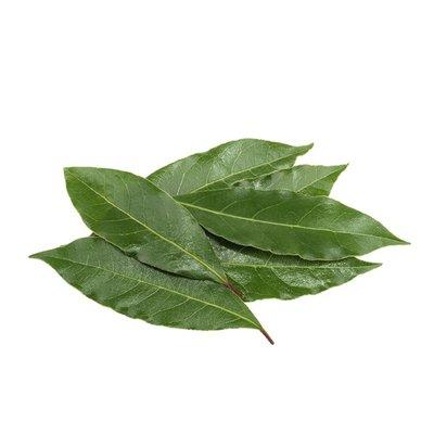 Organic Fresh Bay Leaves