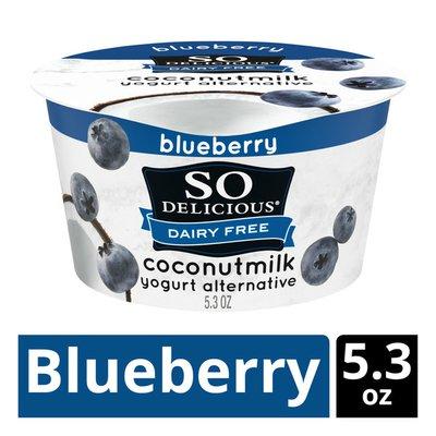 So Delicious Dairy Free Blueberry Coconut Milk Yogurt