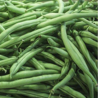 Organic French Green Beans Bag
