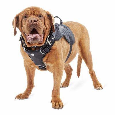 Good2 Go Extra Extra Large to Extra Extra Extra Large Big Dog Adjustable Harness