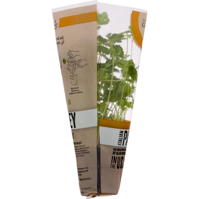 Shenandoah Growers Living Organic Parsley