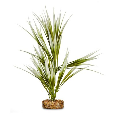 Petco Pacifica Plant