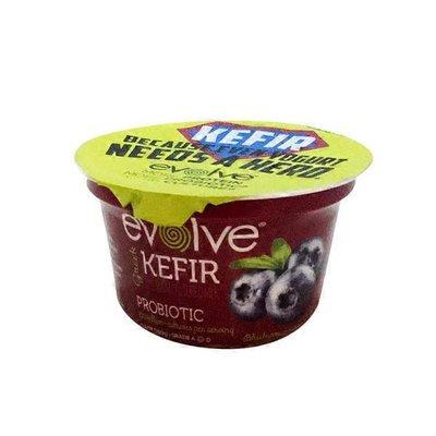Evolve Greek Blueberry Kefir Yogurt