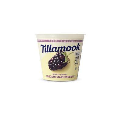 Tillamook Oregon Marionberry Lowfat Yogurt