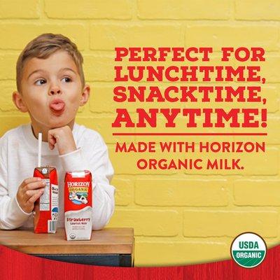 Horizon Organic 1% Lowfat Shelf-Stable Milk