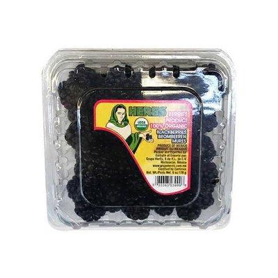 Local/Organic Farms Organic Blackberries