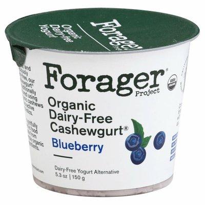 Forager Project Organic Dairy-Free Blueberry Cashewmilk Yogurt