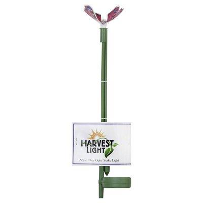 Harvest Light Stake Light, Solar Fiber Optic, Dragonfly