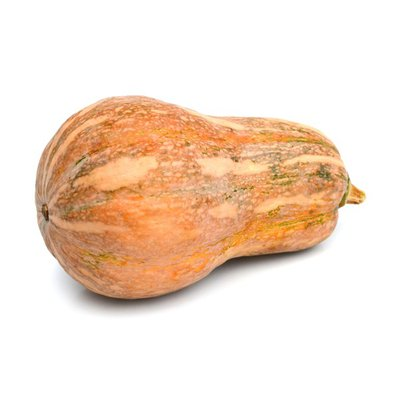 Organic Squash