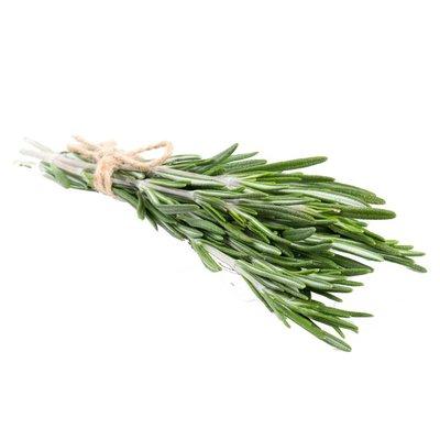 Spring Thyme Herbs Rosemary