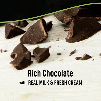 Breyers Ice Cream Chocolate Ice Cream