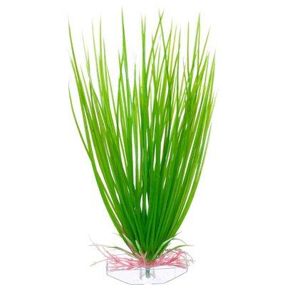 Petco Green Hairgrass Midground Plastic Aquarium Plant