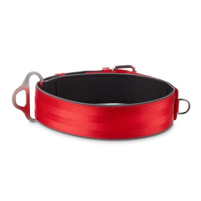 Good2 Go Extra Large to Extra Extra Large Red Big Dog Buckle Collar