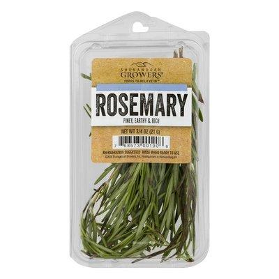 Shenandoah Growers Rosemary