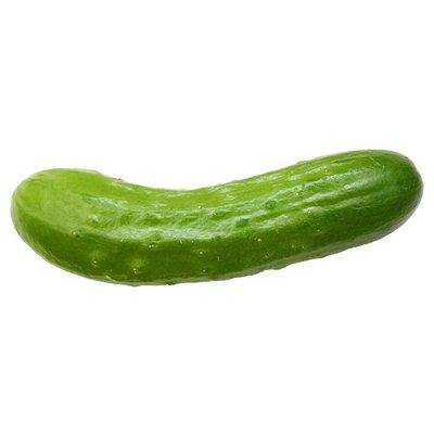 Organic Mini Seedless Cucumber