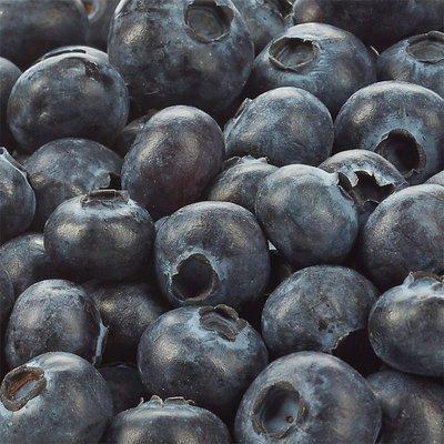 Organic Blueberries, 18 oz