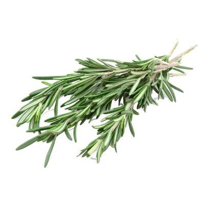 Organic Rosemary Bunch