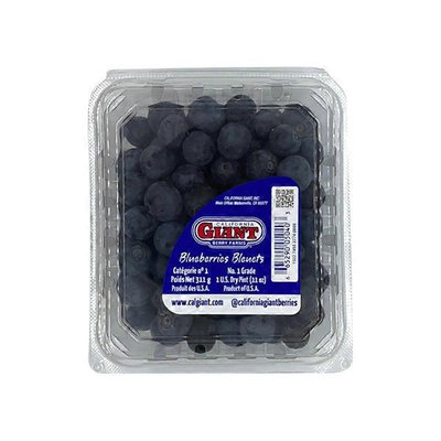 California Giant Blueberries