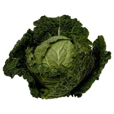 Green Savoy Cabbage