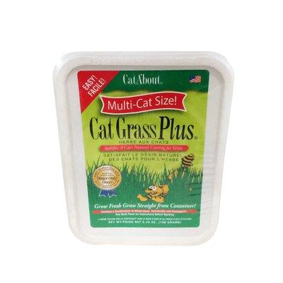 Cat About Cat Grass Plus, Multi-Cat Size!