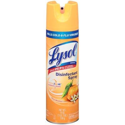 Lysol Citrus Meadows Scent Disinfectant Spray