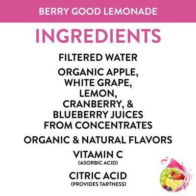 Honest Tea Kids Berry Berry Good Lemonade Organic Fruit Juice