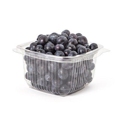 Homestead Farm Fresh Blueberries
