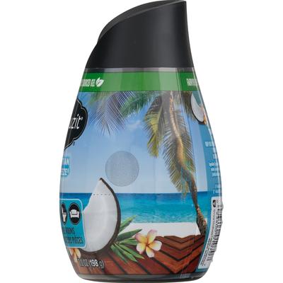 Renuzit Gel Air Freshener, Tahitian Breeze